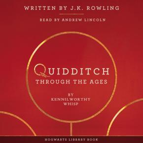 quidditch-through-the-ages-5