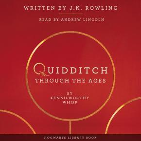 quidditch-through-the-ages-5